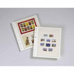 Feuilles mobiles Moc à 2 bandes pour blocs, carnet de timbres.