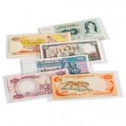 Pochettes de protection pour billets de banque 158 x 75 mm.