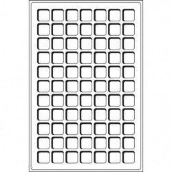 Plateaux numismatiques Leuchtturm format L à 77 cases carrées.