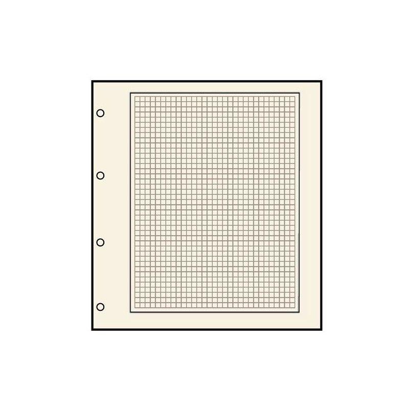 Feuilles neutres Safe chamois quadrillée avec 4 perforations.