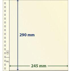 Feuille neutre Lindner-T à 1 bande. (802 106)