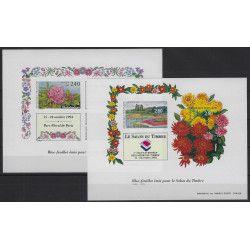 Bloc-feuillet de timbres N°15-16 grands formats non dentelés neuf** SUP.