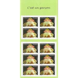 Carnet autoadhésif de timbres naissances - c'est un garçon, neuf SUP.